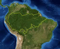 http://www.google.com.mx/imgres?imgurl=http://upload.wikimedia.org/wikipedia/commons/f/f6/Amazon_rainforest.jpg&imgrefurl=http://es.wikipedia.org/wiki/Amazonia&h=329&w=400&sz=79&tbnid=QJaK6z67O-XOIM:&tbnh=93&tbnw=113&prev=/search%3Fq%3DAmazonia%2Bfotos%26tbm%3Disch%26tbo%3Du&zoom=1&q=Amazonia+fotos&docid=b16iH0EsxbRI2M&hl=es&sa=X&ei=_Km9TtTNCsma2gW6yJC1BQ&ved=0CCIQ9QEwAA&dur=3439